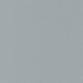 Столешница СОЮЗ Классик - Цвет: Серебро 116М
