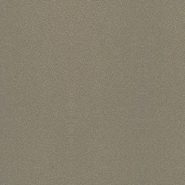 Столешницы Кедр 4.1 метра (5 категория) - Цвет: G014/1 Галактика Шампань