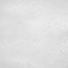 Стеновые панели Скиф 4.2 метра - Цвет: Латиница белая 801