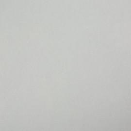 Стеновая панель Троя Стандарт 1-я группа цвет: 1110/S Белый