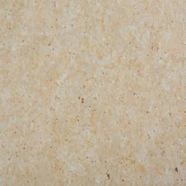 Стеновая панель Троя Стандарт 5-я группа цвет: 2328/SO Травертин каталонский