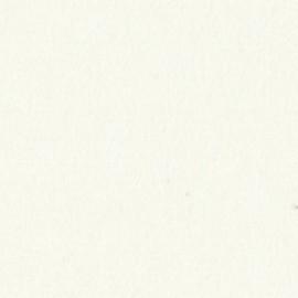 Стеновая панель Троя Стандарт 9-я группа цвет: 0003 mika Белая мика