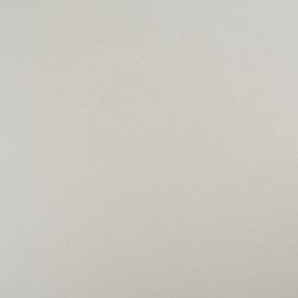 Стеновая панель Троя Стандарт 9-я группа цвет: 017/Е Супер белый