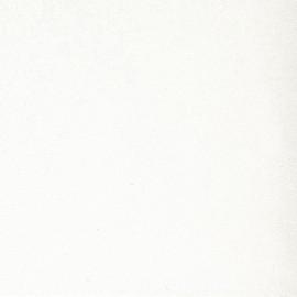 Угловая столешница Троя Стандарт 3-я группа цвет: 2001/MF Белый компенсационный